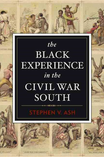 Black Experience in the Civil War South