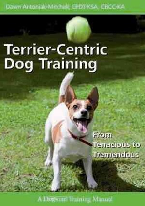 Terrier-Centric Dog Training