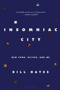 Insomniac City by Bill Hayes (9781620404935) - HardCover - Graphic Novels Memoirs