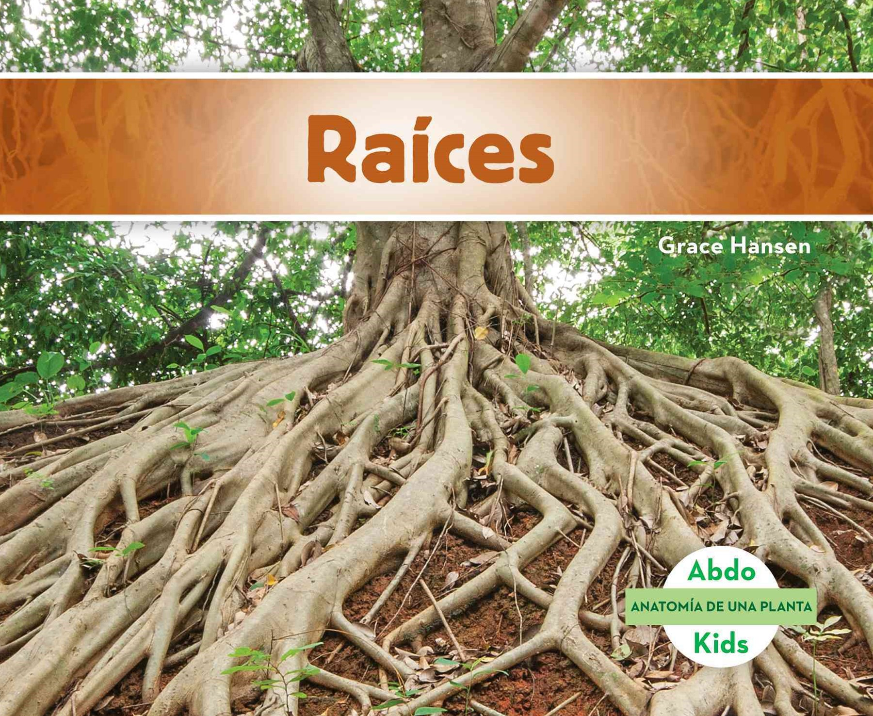 Raíces (Roots)