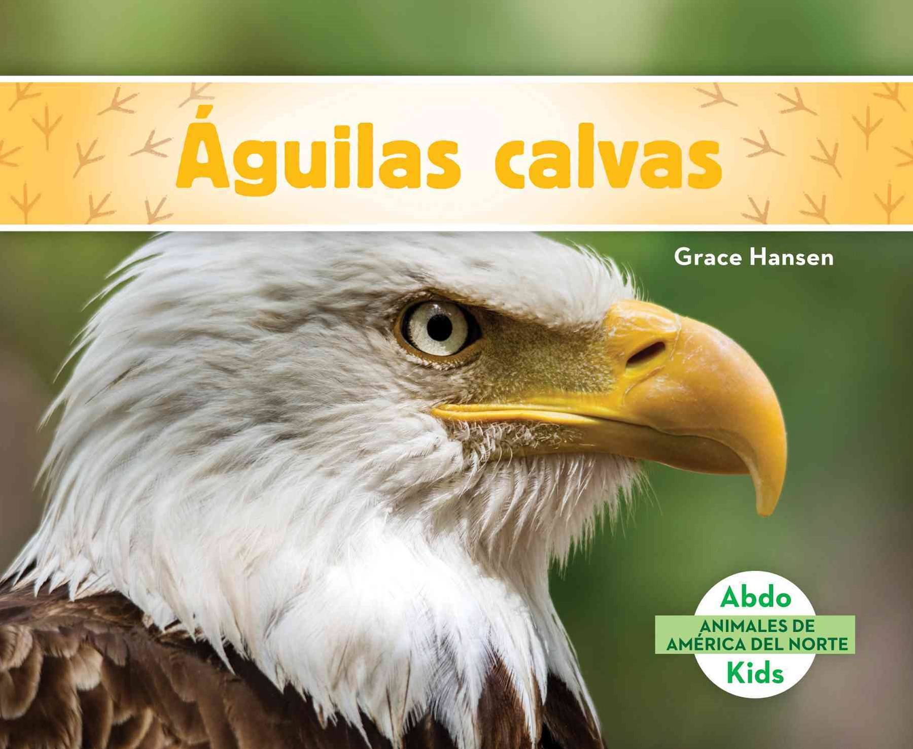 Águilas Calvas (Bald Eagles)