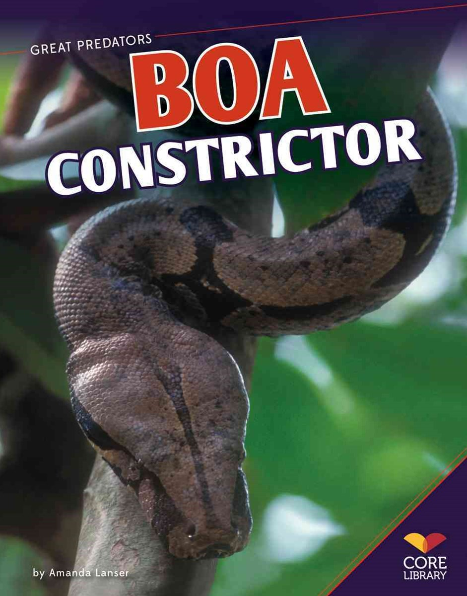 Boa Constrictor Paperback
