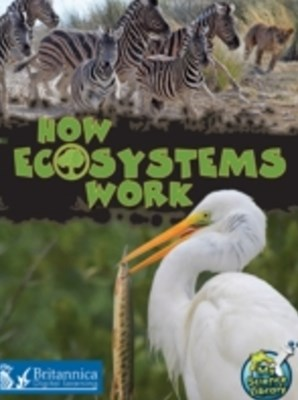 How Ecosystems Work