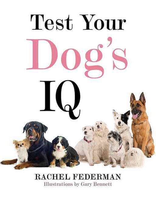 Test Your Dog's IQ