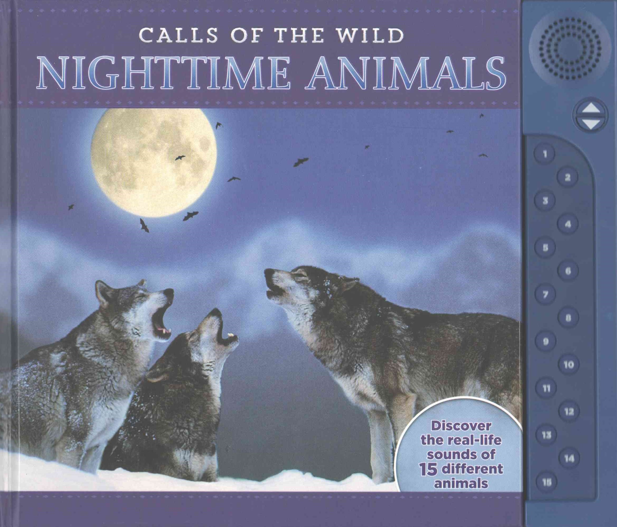 Calls of the Wild: Nighttime Animals