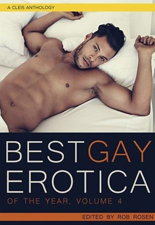 Best Gay Erotica of the Year