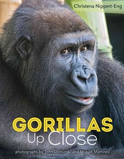 Gorillas Up Close by Christena Nippert-Eng, John Dominski, Miguel Martínez (9781627790918) - HardCover - Non-Fiction Animals