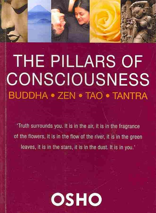 The Pillars of Consciousness
