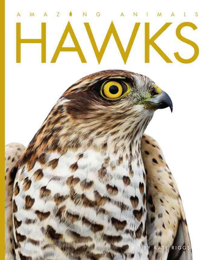 Amazing Animals: Hawks
