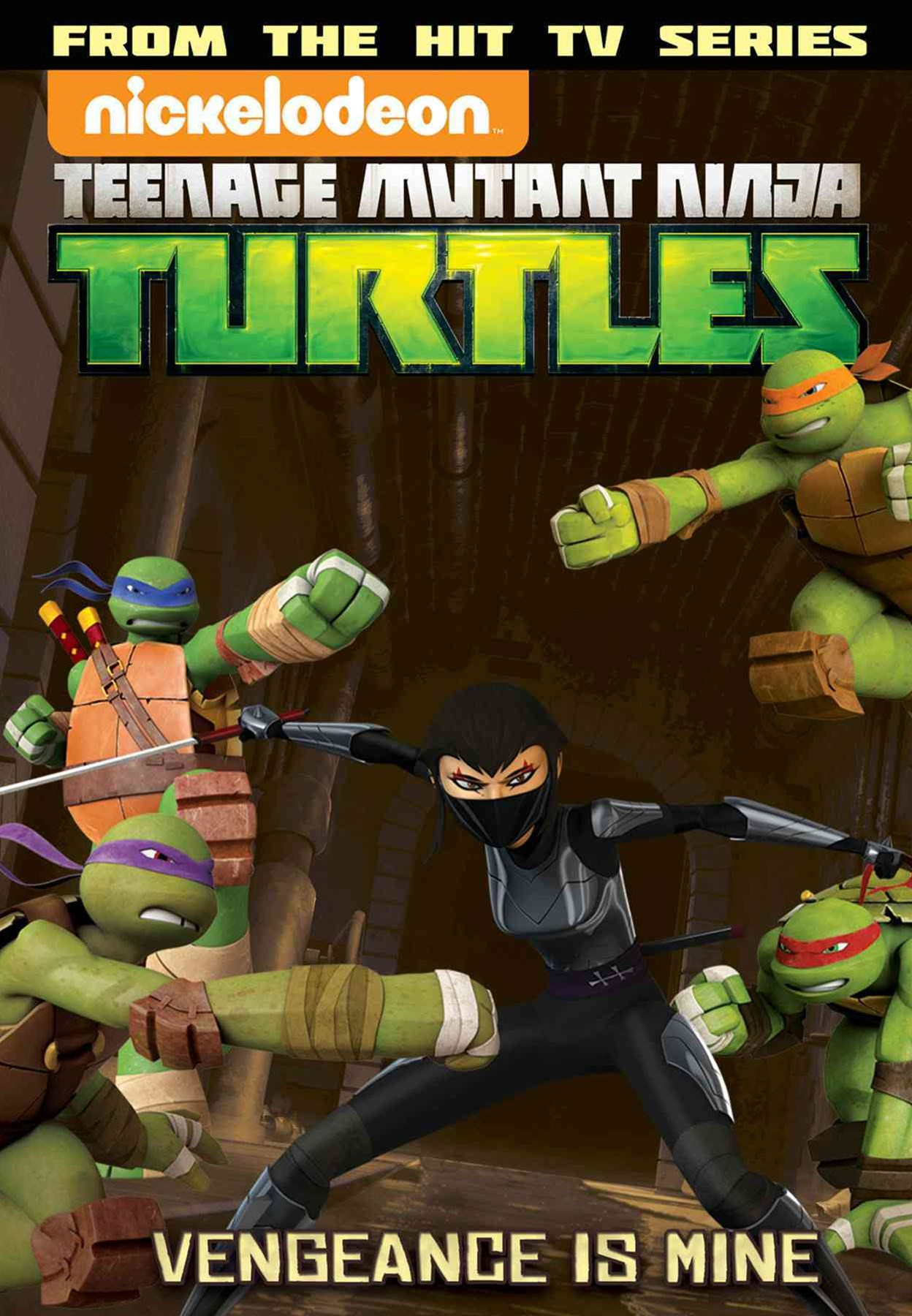Teenage Mutant Ninja Turtles Animated Volume 6: Vengeance Is Mine