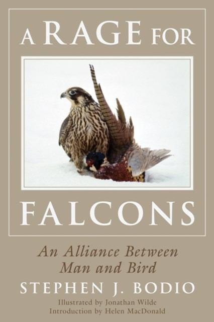 Rage for Falcons