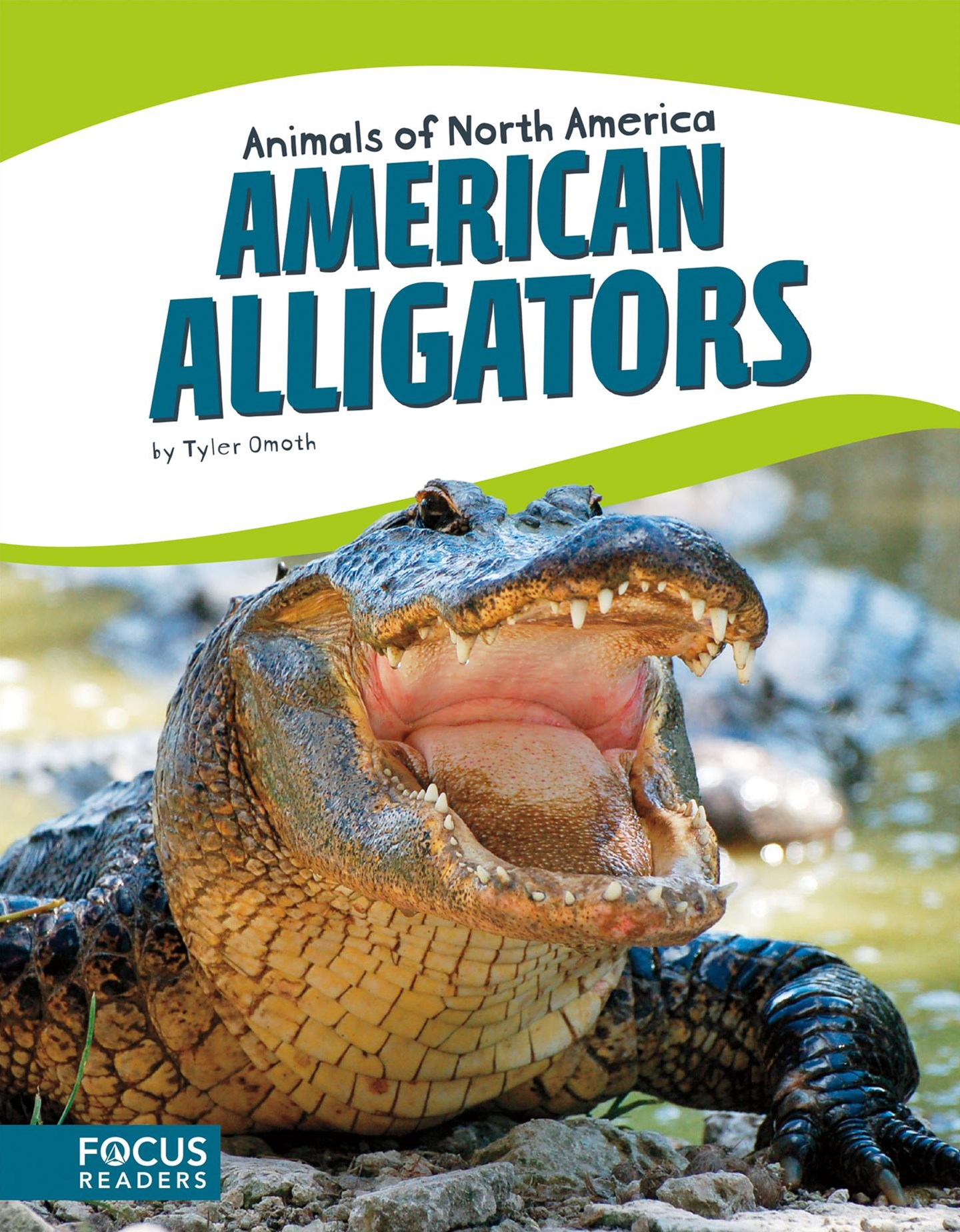 Animals of North America: American Alligators
