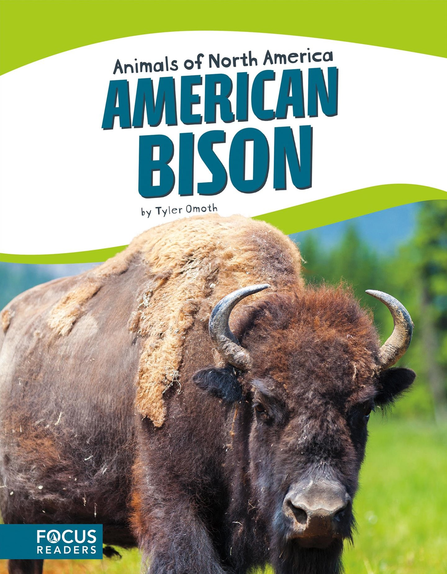 Animals of North America: American Bison