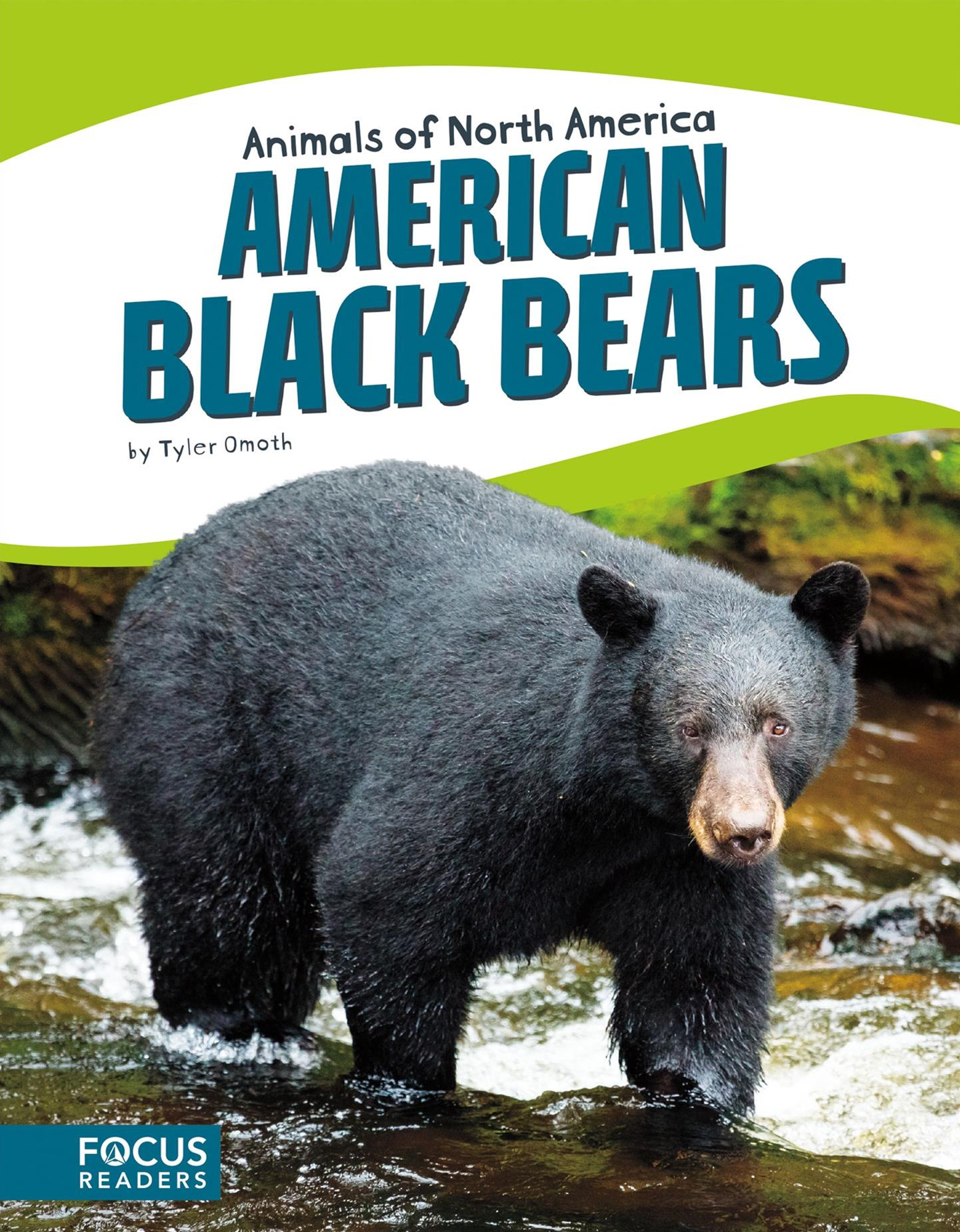 Animals of North America: American Black Bears