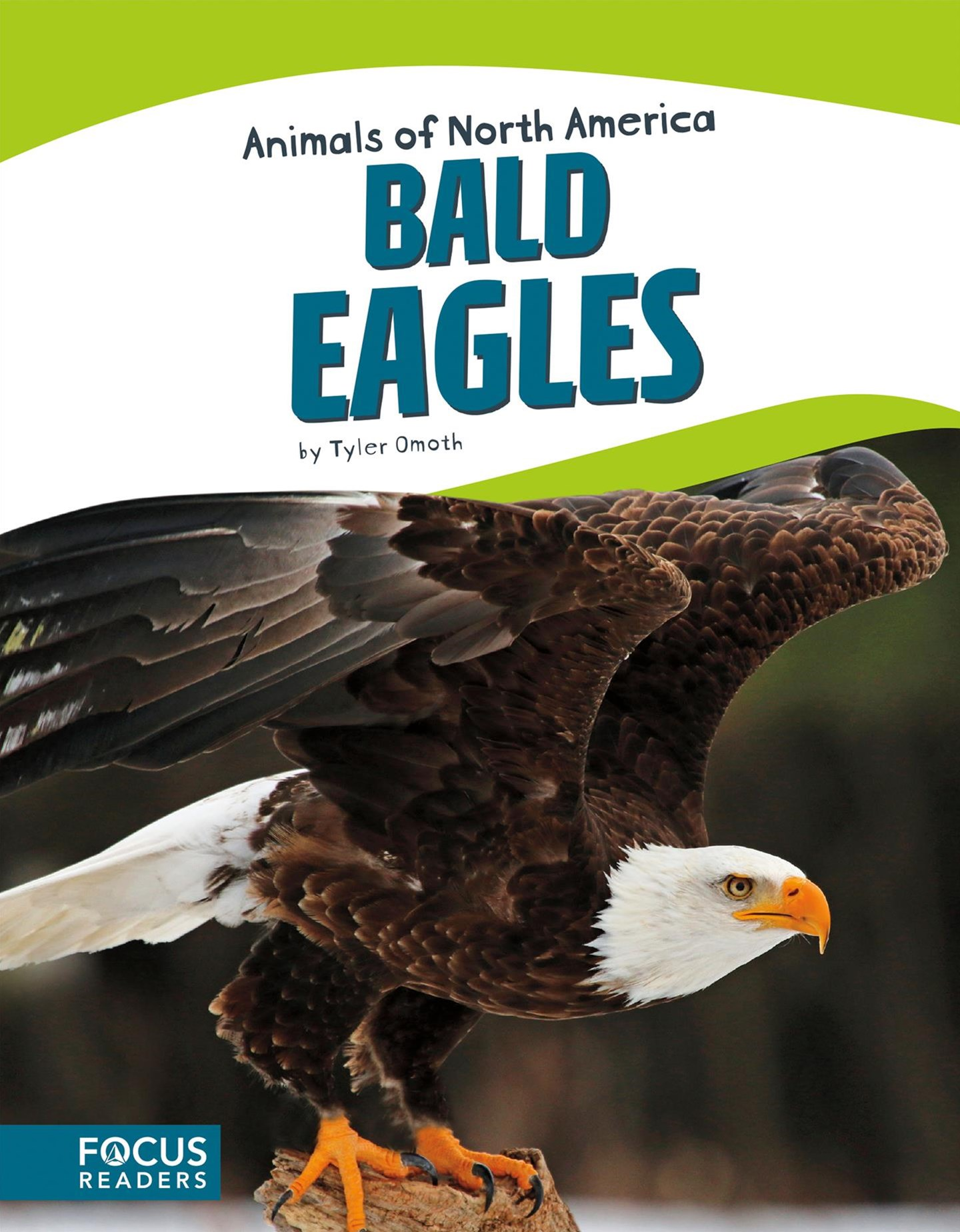 Animals of North America: Bald Eagles