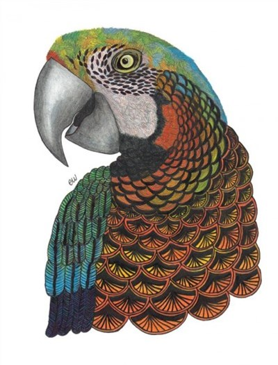 Tangleeasy Parrot Journal