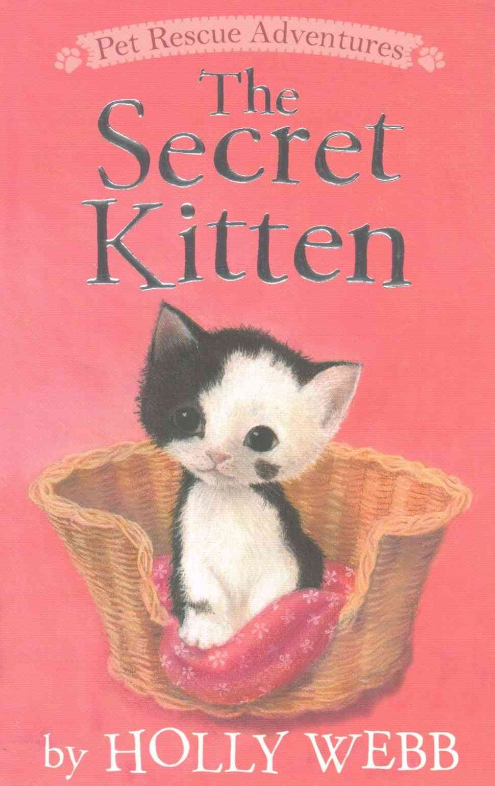 The Secret Kitten