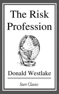 (ebook) The Risk Profession