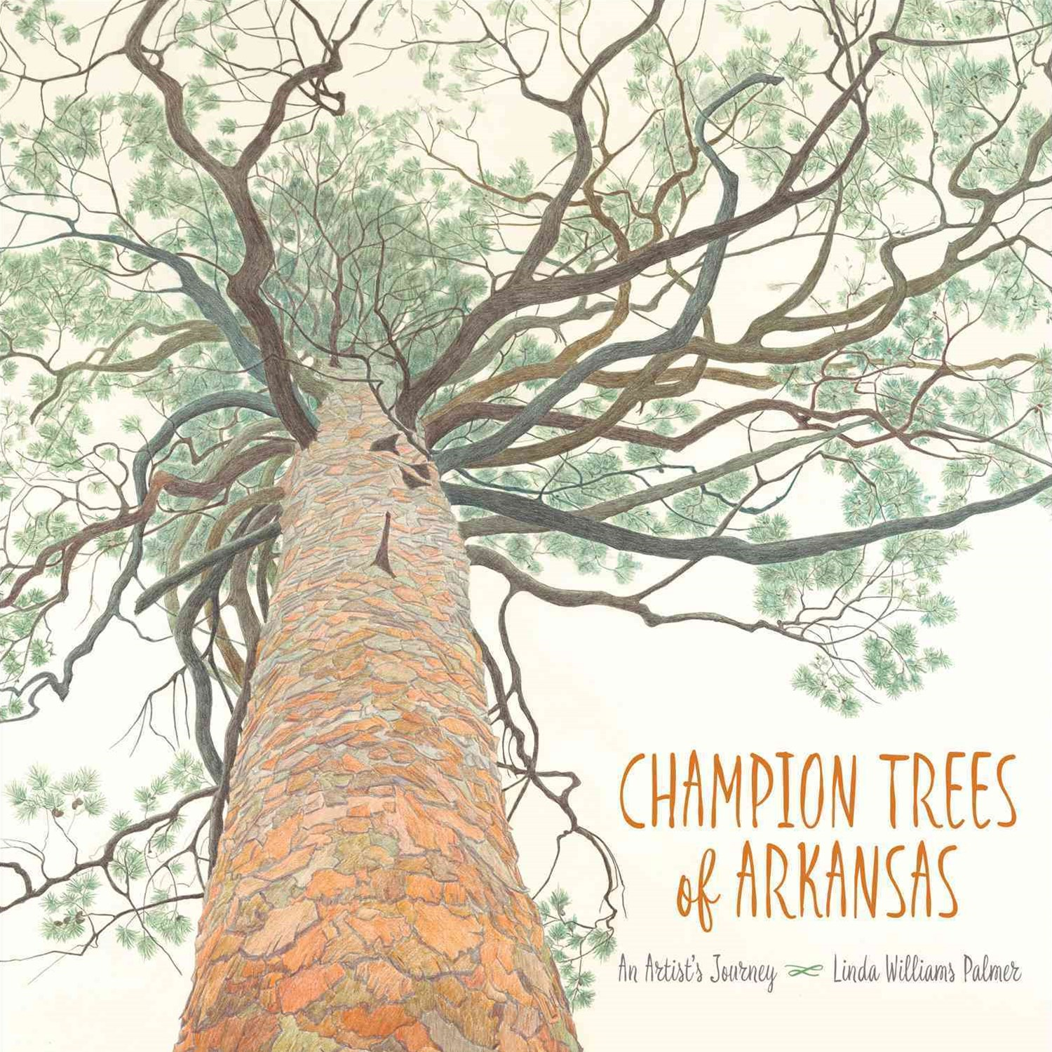 Champion Trees of Arkansas