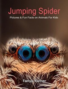 Jumping Spider by Tanya Turner (9781719152181) - PaperBack - Non-Fiction Animals