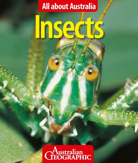 All About Australia: Insects
