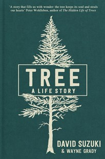 Tree by David Suzuki, Wayne Grady, Peter Wohlleben (9781760523770) - HardCover - Science & Technology Environment