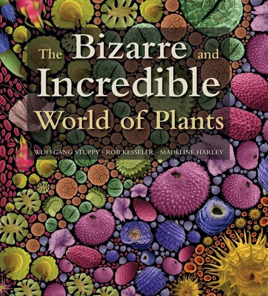 Bizarre and Incredible World of Plants