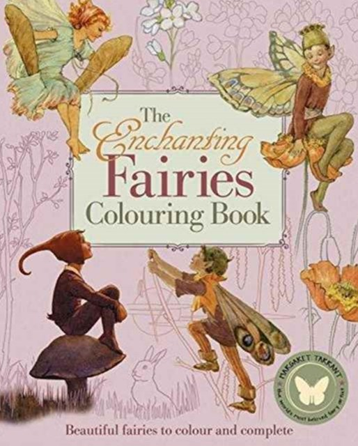 Enchanting Fairies Colouring Book