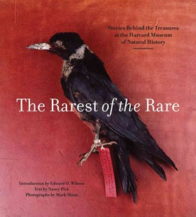 Rarest of the Rare: The Stories Behind the Harvard Museum of Natural History by PICK, SLOAN, WILSON, Mark Sloan, Edward O. Wilson (9781785510113) - PaperBack - Reference
