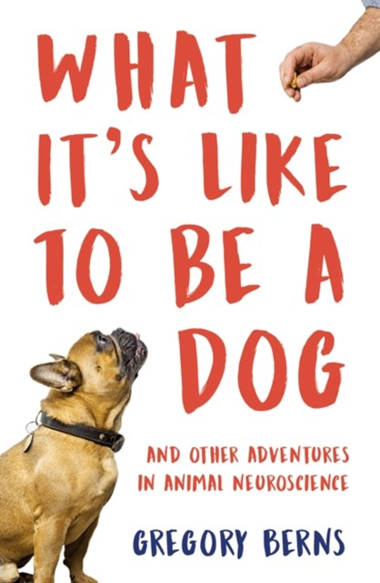 (ebook) What It's Like to Be a Dog