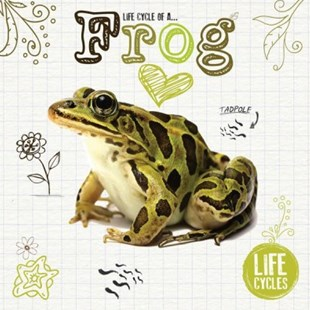Frog by Grace Jones (9781786376473) - PaperBack - Non-Fiction Animals