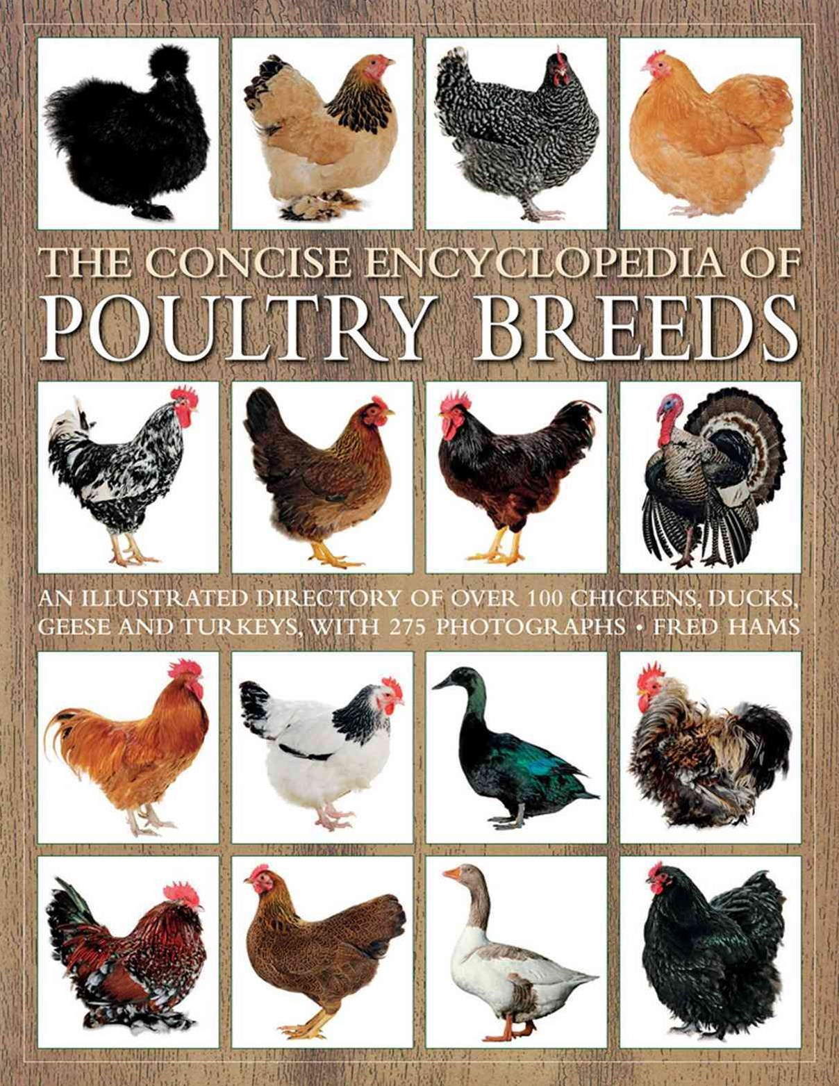 Concise Encyclopedia of Poultry Breeds