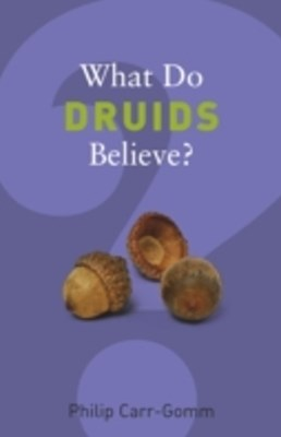 (ebook) What Do Druids Believe?