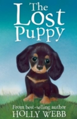 (ebook) Lost Puppy
