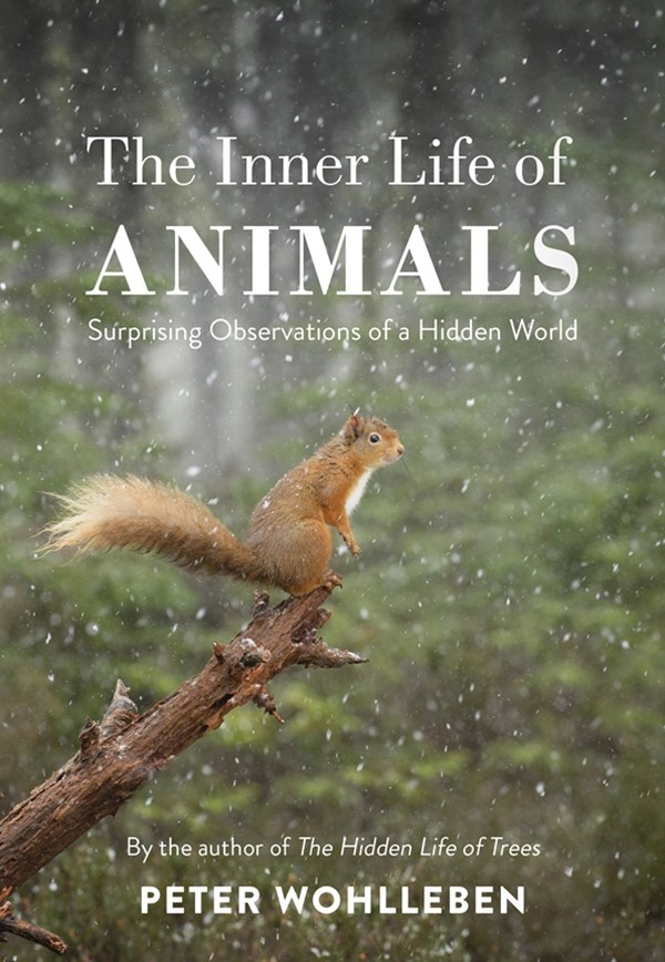 The Inner Life of Animals: Love, Grief, and Compassion - Surprising Observations of a Hidden World