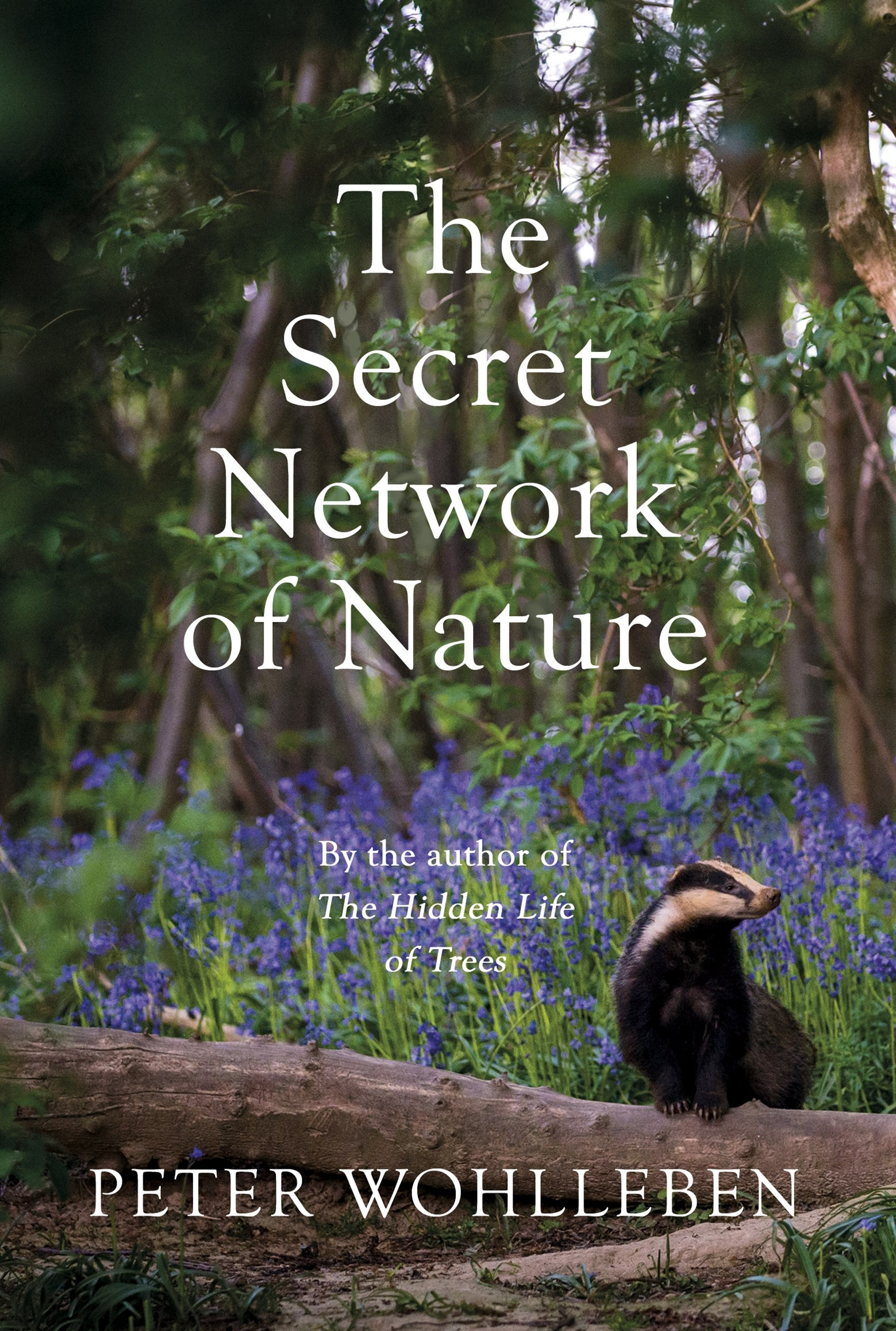 The Secret Network of Nature