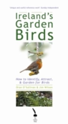 Ireland's Garden Birds - How to Attract, Identify and Garden for Birds