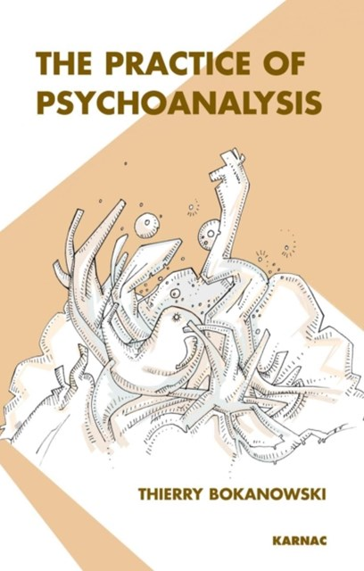 (ebook) Practice of Psychoanalysis