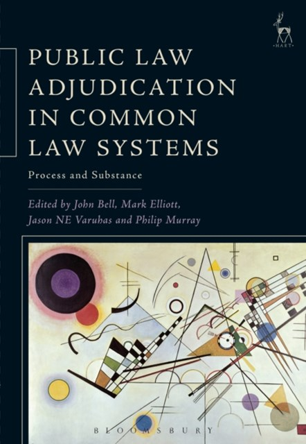 (ebook) Public Law Adjudication in Common Law Systems