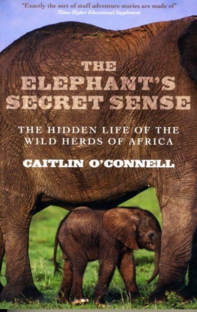Elephants Secret Sense