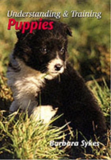 Understanding and Training Puppies