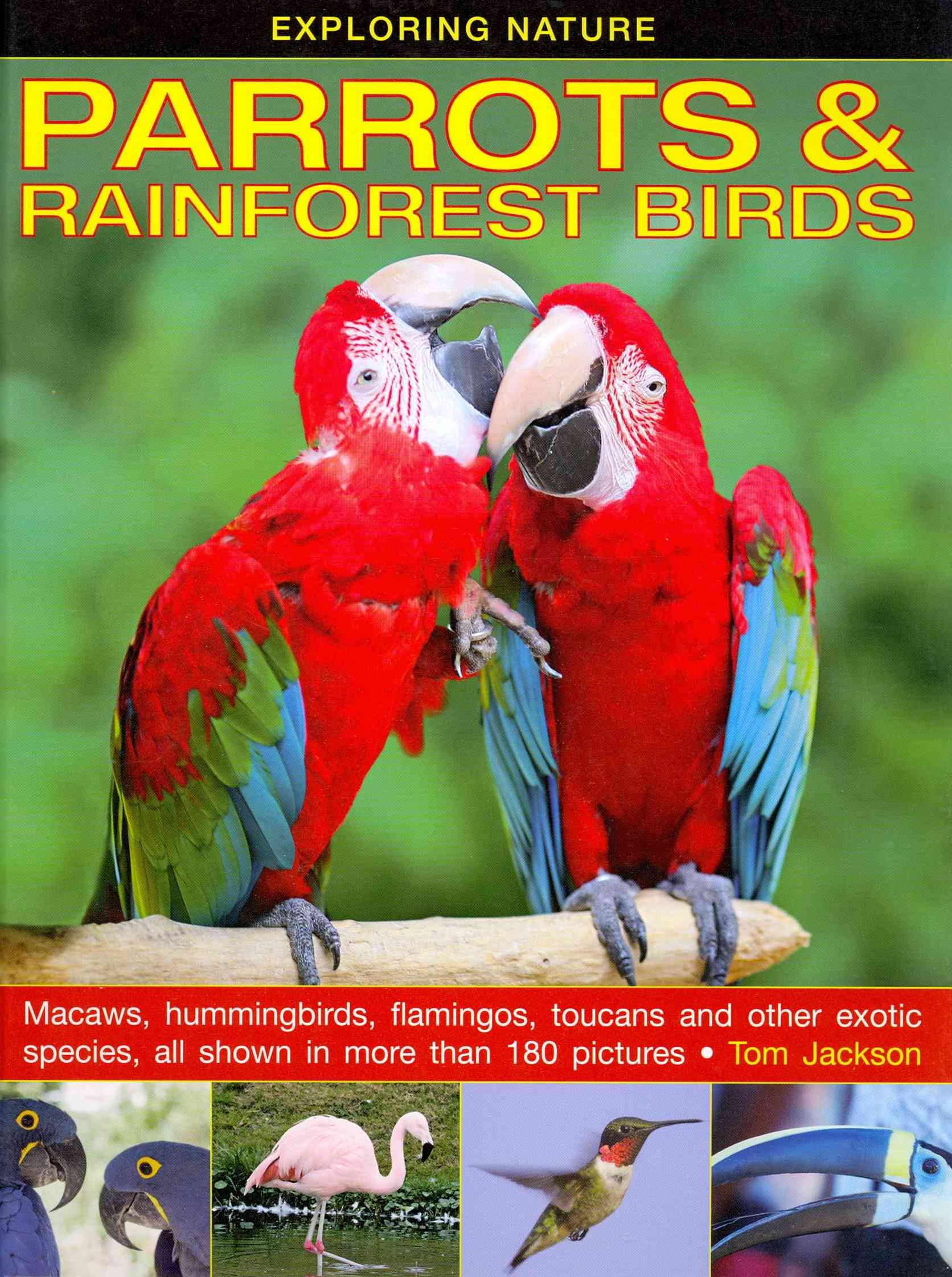 Exploring Nature: Parrots & Rainforest Birds