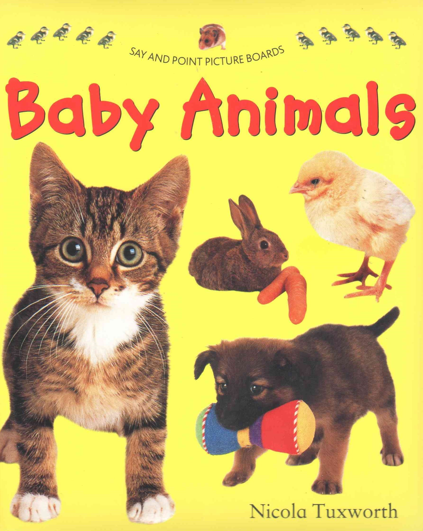 Say and Point Picture Boards: Baby Animals