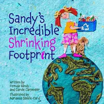 Sandy's Incredible Shrinking Footprint