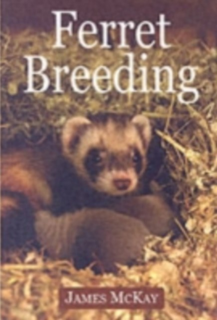 Ferret Breeding