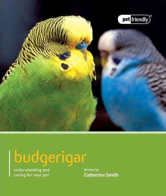 Budgeriegars - Pet Friendly