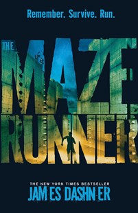 The Maze Runner by James Dashner (9781908435132) - PaperBack - Children's Fiction Teenage (11-13)