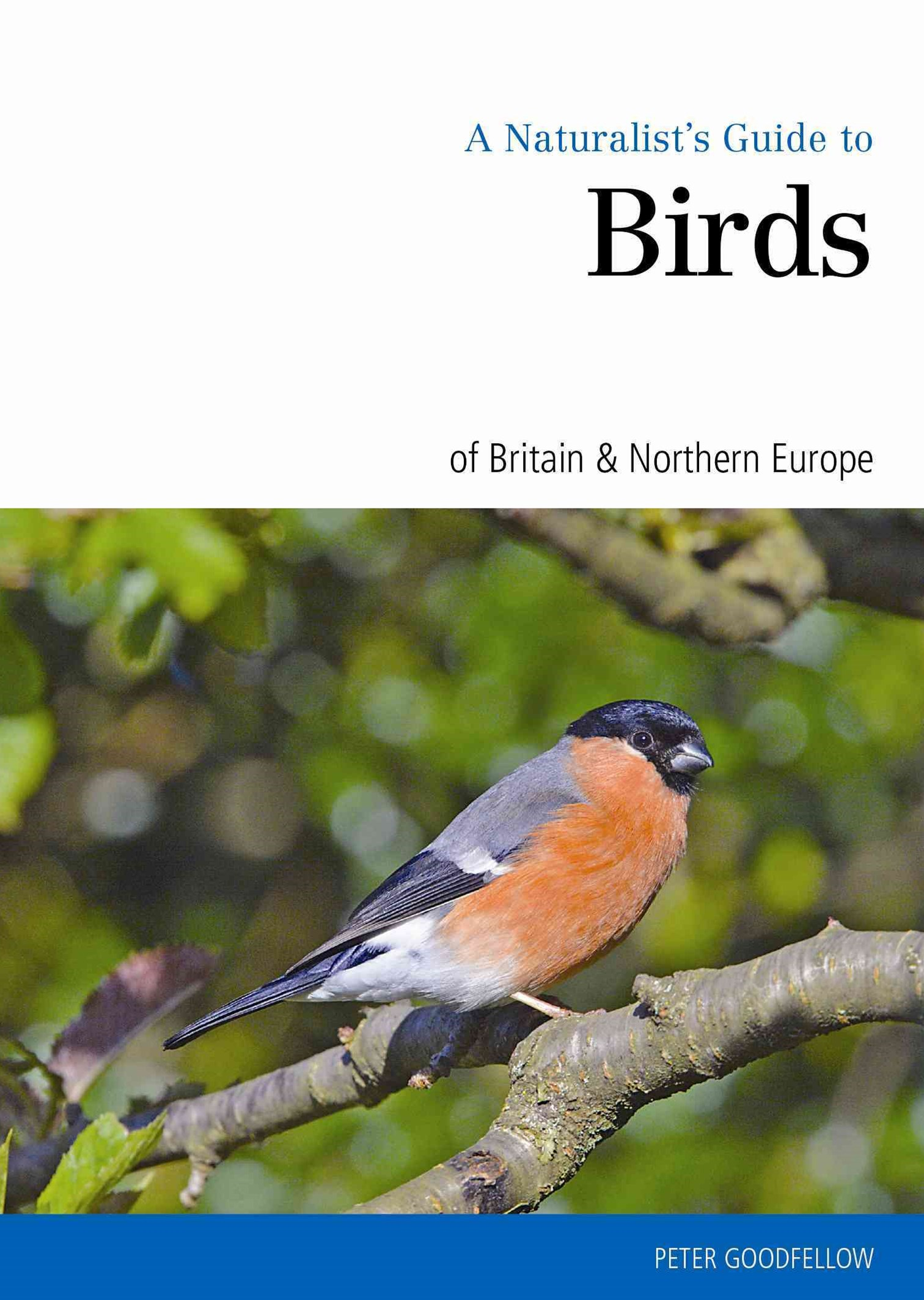 Naturalist's Guide to the Birds of Britain & Northern Ireland