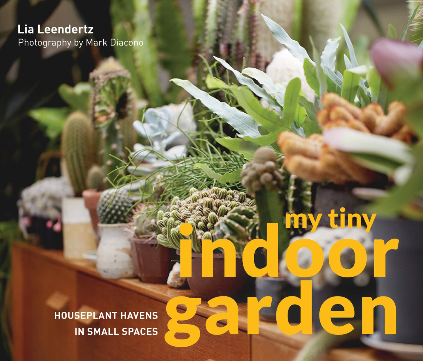 My Tiny Indoor Garden: Houseplant Havens in Small Spaces