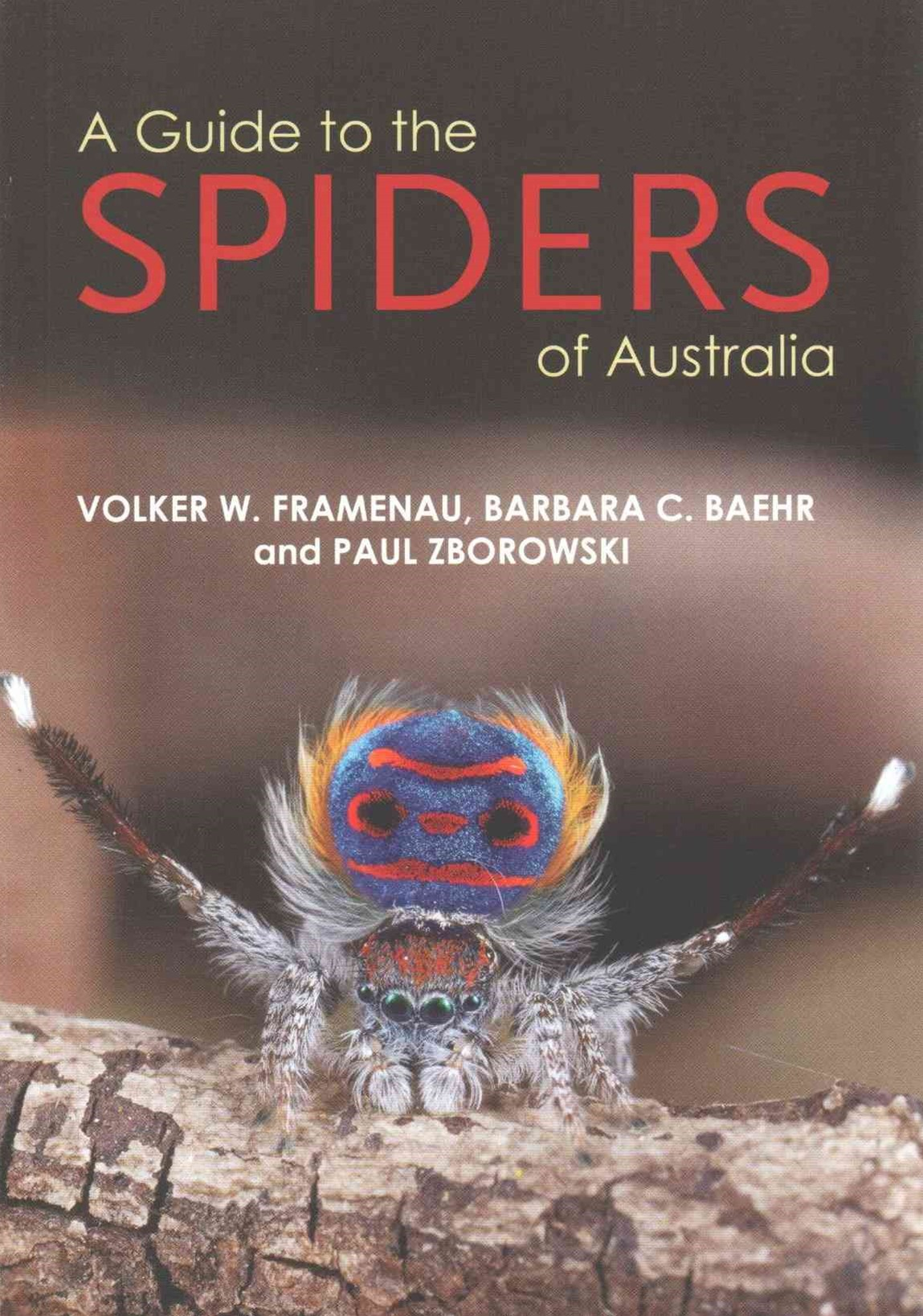 A Guide to Spiders of Australi